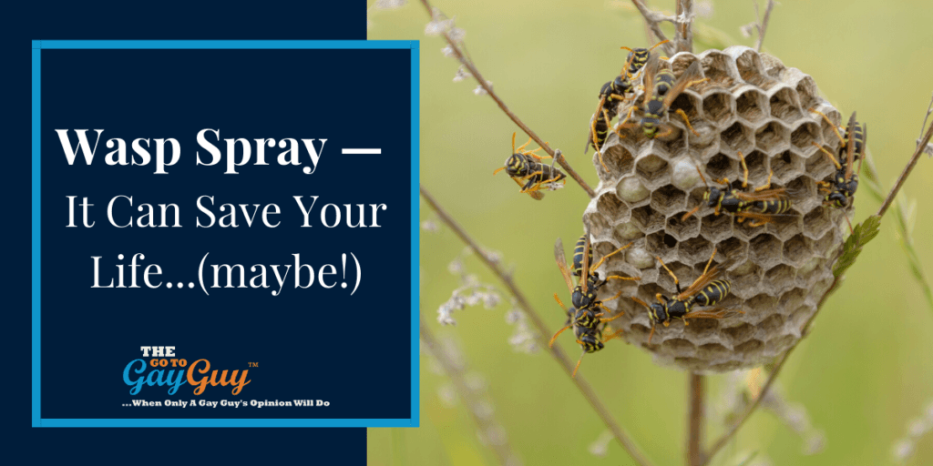 Wasp Spray — It Can Save Your Life...(maybe!)