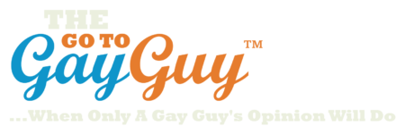 The Go To Gay Guy
